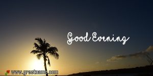Wimagesgood Evening Palm Tree Sunset Pictures.jpg