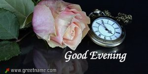 Wimagesgood Evening Pink Rose Flower Pictures.jpg
