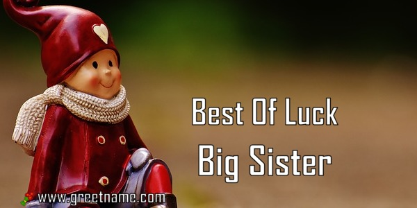 Best Of Luck Big Sister Boy Sitting Greet Name