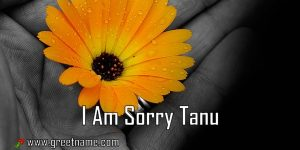 I Am Sorry Tanu Flower In Hand