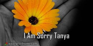 I Am Sorry Tanya Flower In Hand