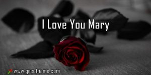 I Love You Mary Rose Flower