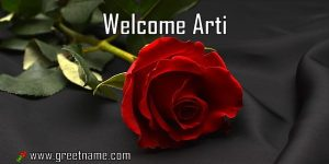 Welcome Arti Rose Flower