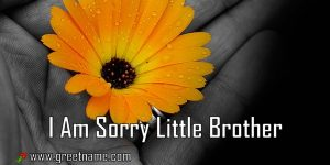 I Am Sorry Little Brother Flower In Hand