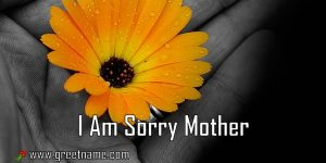 I Am Sorry Mother Flower In Hand