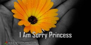 I Am Sorry Princess Flower In Hand