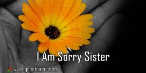 I Am Sorry Sister Flower In Hand
