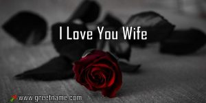 I Love You Wife Rose Flower