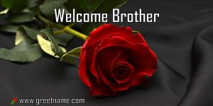 Welcome Brother Rose Flower