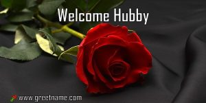 Welcome Hubby Rose Flower