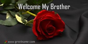 Welcome My Brother Rose Flower