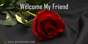 Welcome My Friend Rose Flower