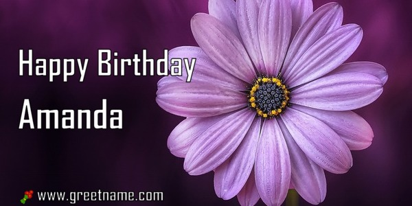 Happy Birthday Amanda Flower Purple Greet Name