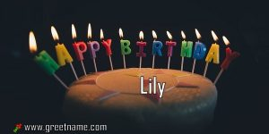 Happy Birthday Lily Cake Candle