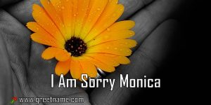 I Am Sorry Monica Flower In Hand