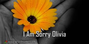 I Am Sorry Olivia Flower In Hand