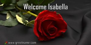 Welcome Isabella Rose Flower