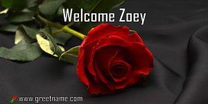 Welcome Zoey Rose Flower
