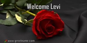 Welcome Levi Rose Flower